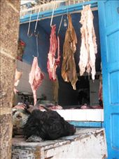 The Butcher: by algrange, Views[164]