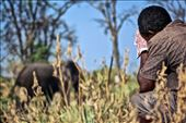 A guide looks on nervously as a huge bull Elephant passes out camp.: by amacphoto7, Views[20]