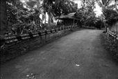 by applecruda, Views[31]