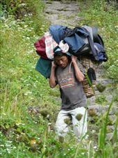 Less heavy load back.: by baba, Views[188]