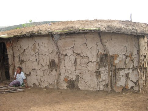 Traditional masai house made from wood, mud, cow dung ...