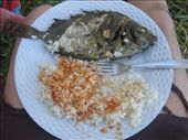 Mmm...fresh fish and coconut rice...: by beth_king, Views[251]