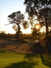 More beautiful vineyard. Western Australia does have the monopoly on good sunsets: by candjmcshane, Views[140]