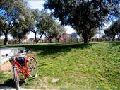 my ride: by celine_in_barcelona, Views[94]
