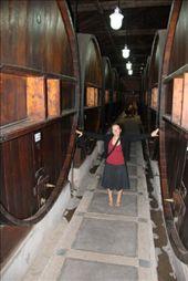Big wine barrels: by chris_and_dusk, Views[78]