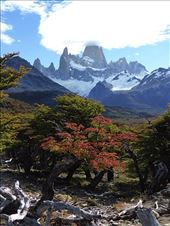 Cerro Torre, El Chalten: by clare-tamea, Views[24]