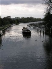 A canal barge slowly moving along the Thames past Teddington: by dale_ireland, Views[127]