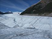 Ice Hiking on Root Glacier : by dannygoesdiving, Views[29]
