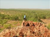 A picture of me at the top of a hill on Mt Roseby: by edinoz, Views[64]