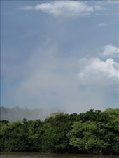 The spray of the Garganta del Diablo (Devil's Throat) over the trees: by escape_artist, Views[113]