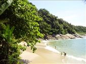 But to swim we changed to a sandy bay, where the Atlantic rainforest can still be seen in it's original beauty: by fabia, Views[151]