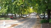 The main street in Stirling, a sleepy little town up in the Adelaide Hills, just down the road from Mt. Lofty, south-east of the city. Stirling is the wettest place in South Australia, and was thus recommended to English migrants back in the days of heavy immigration.: by flyted, Views[342]