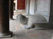 Tortue : symbole de longévité. Chacune supporte une stèle avec le nom des gradués (datant du 14 siècle!!!): by genebi, Views[430]
