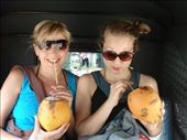 Drinking king coconut (very good, healthy & nutritive!) on a riksa drive to Mt. Lavinia: by greenguava, Views[706]