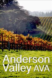 Anderson Valley Wine Country in California: by jgreghenry, Views[198]