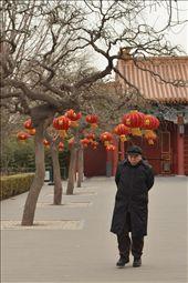 an elderly man walking past lanterns celebrating the start of a new year: by jiwonkim, Views[62]