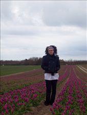 Jenny in a flower field. South Finistere  Jenny au milieu d'un champ de fleurs. Finistere Sud: by jmoison, Views[240]