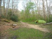 Beautiful, secluded campsite, Smokey Moountains, TN: by john_hockley, Views[17]