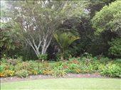 Gardens at the Treaty House: by kiwi_kerry, Views[103]