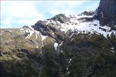 by kiwiaoraki, Views[41]