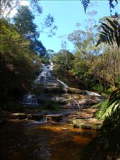 hiking in the Blue Mountains: by kp207105, Views[38]