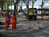 I respect the monks, living simply in a complex world: by kp207105, Views[26]