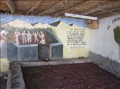 bodega Lazo, vineyard, ICA: by ldeutch, Views[1305]