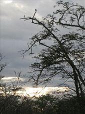 by luchinko, Views[127]