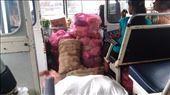 Bus to Nainativu: by macedonboy, Views[7]