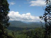 Taman Negara National Park: by markr_mcmahon, Views[239]