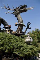 GwanYin's Dragon, Yongungsa, Busan: by marmalade, Views[146]