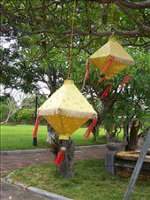 lanterns: by matsmith, Views[76]