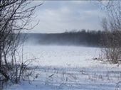 Snow blowing in the back field, when we first arrived.: by melissa, Views[74]