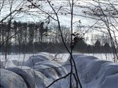 Snow covered hay bales.  : by melissa, Views[108]