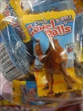 one of the most popular sweets at Roper Bar Store. Camel Balls. ... !: by michidoesoz, Views[57]
