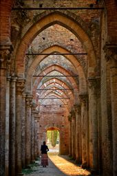 A woman absorbs the ruins of the famous abbey at San Galgano. Many say that the legend of Excalibur originated in this area. : by mprokosch11, Views[74]