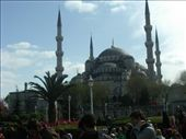 The Blue Mosque in the sunshine: by murrihyk, Views[56]
