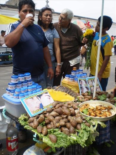 Caracoles y gusanos, medicina y alimento de la selva peruana
