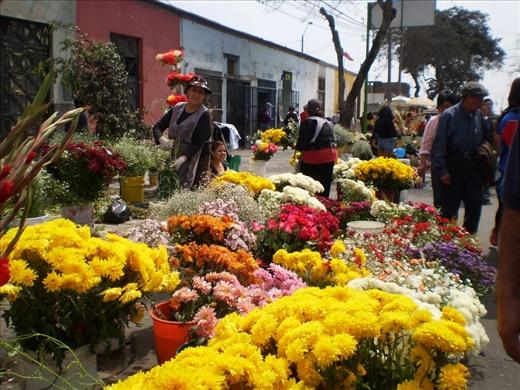 Flores para llevar, un cementerio no es el mismo si no hay flores alrededor