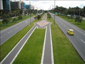 the cycle lanes run in the centre of some streets: by nomad_kiwis, Views[174]