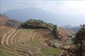 Longji rice terraces: by nomadnorrie, Views[117]