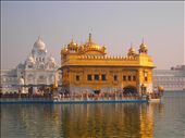 The Guru's Bridge and The Golden Temple. The causeway symbolises the journey of the soul after death and leads to The Golden Temple, which stands in the sacred pool. This is the holiest shrine in Sikhism and is a major pilgrimage destination for Sikhs all over the world.: by notallwhowanderarelost, Views[818]