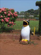 Penguin bin at Hanging Gardens, Mumbai: by over-40, Views[1041]