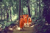 Tibetan monks in search of the same secret forest waterfall as we are.: by randypmartin, Views[48]