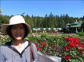 Muma in the Rose Gardens: by rosiecallinan, Views[100]