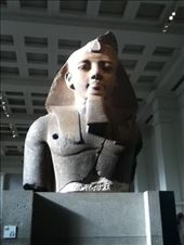 King Tut at the British Museum: by shayshine, Views[5]