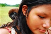 Reveals the domestication of moneys within an Ecuadorian Amazon community. Monkeys are tied to poles or sold to the nearby cities. The monkeys face reveals his terror.: by simonefrancis, Views[279]