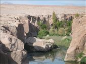 Water oasis in the middle of the desert (water was filthy though-locals still swim in it however): by simonmurnane, Views[207]