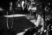 Playing ground: by siyam, Views[53]