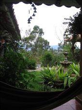 Hammock, courtyard: by spencerhoneyman, Views[184]